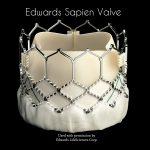 Edwards Sapien Valve